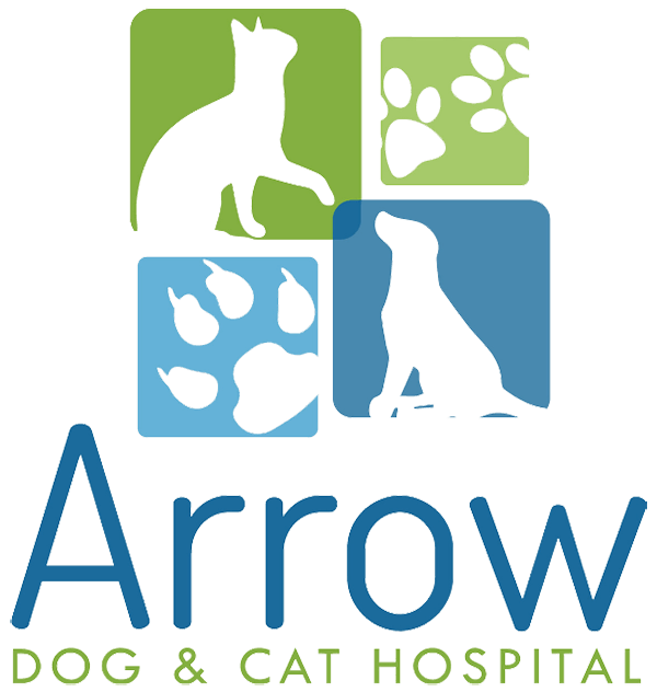 Arrow Dog & Cat Hospital