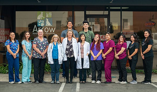Veterinarian in Montclair, CA